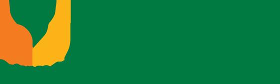 RareDR logo
