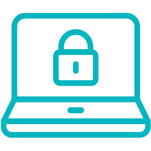 CGNET IT Security Risk Assessment 500x500px